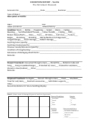Condition Report Template (textile) - The Petroleum Museum