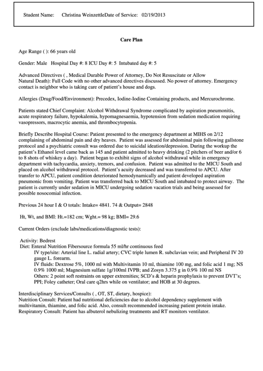 Sample Care Plan Template Printable pdf