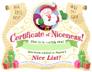Certificate Certificate Of Niceness Template