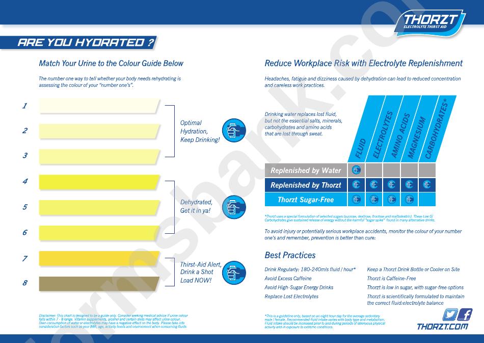 Urine Color Chart Printable Pdf Download