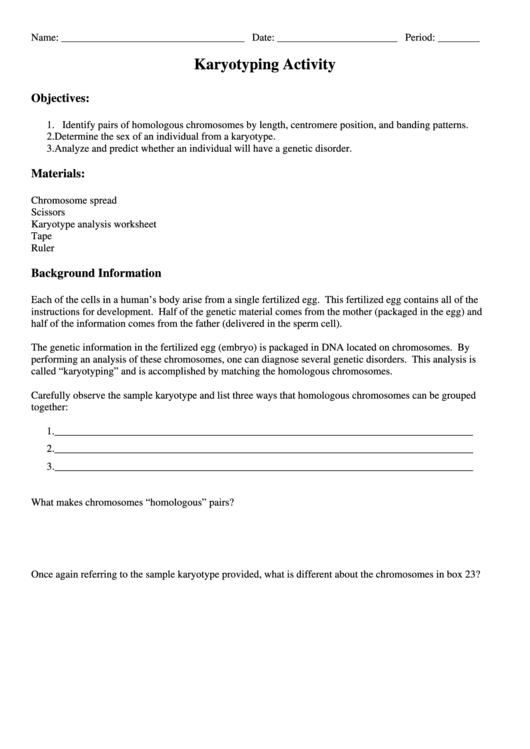 Karyotyping Activity printable pdf download
