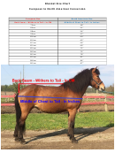 Eaglewood Equestrian Horse Blanket Size Chart - European To North American Conversion