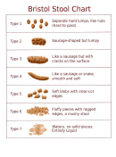 Bristol Stool Chart printable pdf download