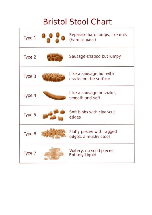 bristol stool chart printable pdf download