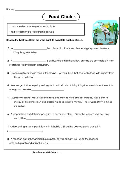 Food Chains Biology Worksheet Printable Pdf Download