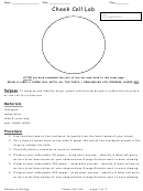 Cheek Cell Lab Biology Worksheets