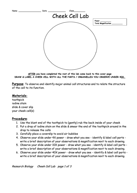 laboratory report cover and worksheet This is a blank template i have created to expose my first graders to the steps used by scientists via a lab report format i use it for each one of my science investigations in order to have predictability and to record my students' thinking along the way.