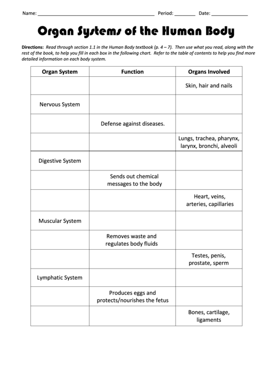 Organ Systems Of The Human Body Biology Worksheets