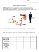 Levels Of Biological Organization Biology Worksheets