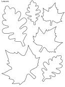 Various Leaf Shapes