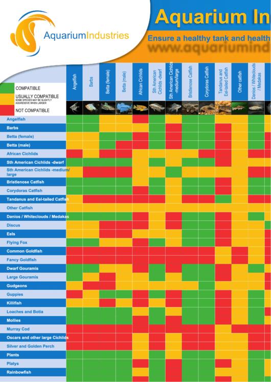 Aquarium industries freshwater fish compatibility chart for Freshwater fish compatibility