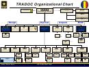 Tradoc Organizational Chart