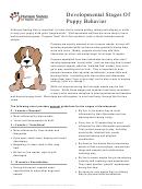 Developmental Stages Of Puppy Behavior