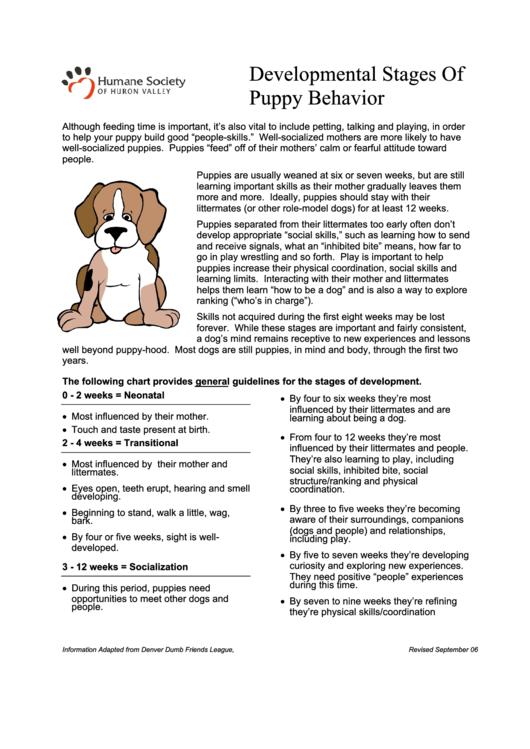 Developmental Stages Of Puppy Behavior Printable pdf