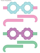 Flower Eyeglasses Template