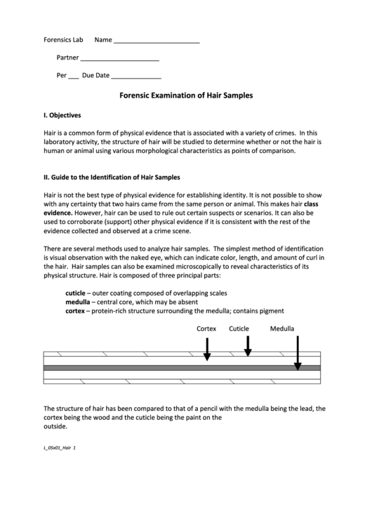 Forensic Examination Of Hair Samples Biology Lab Report Template
