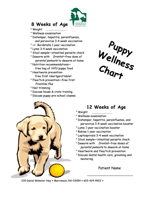 Puppy Growth Charts Templates U0026 Forms. Puppy Wellness Chart