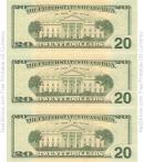 Twenty Dollar Bill Template - Back