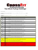 Two Week Pushup Challenge