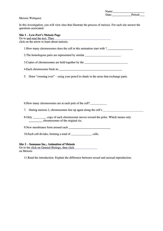 Meiosis Webquest Biology Worksheets Printable Pdf Download