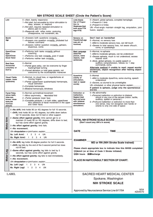 Top Nih Stroke Scale Form Templates Free To Download In