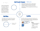 Cell Cycle Project