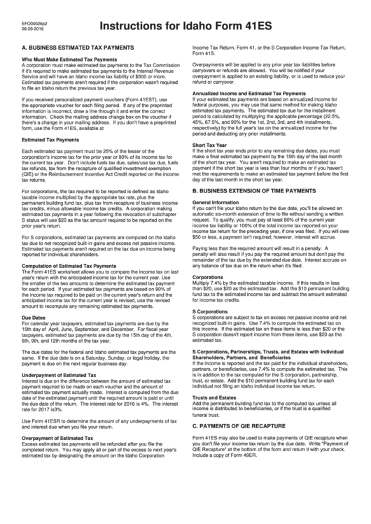Instructions For Idaho Form 41es