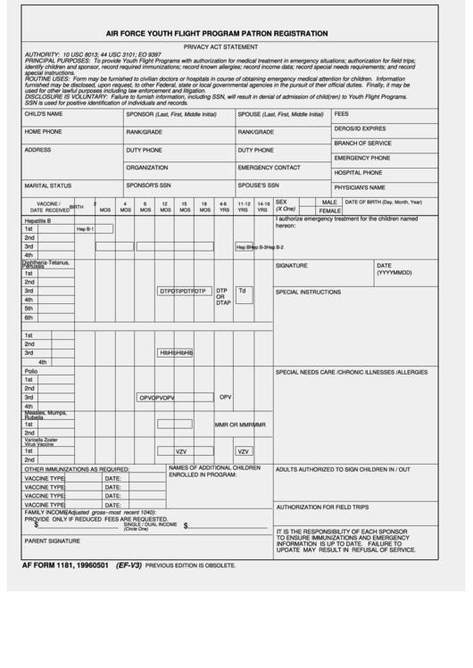 Af Form 1181 - Air Force Youth Flight Program Patron Registration ...