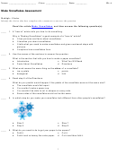 Make Snowflakes Assessment