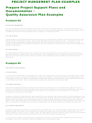 Project Mangement Plan Examples
