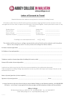 Sample Letter Of Consent To Travel