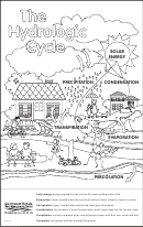 The Hydrologic Cycle Coloring Page