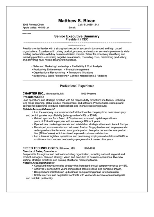 Sample Resume - Ceo Printable pdf