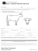 Dairy Animal Lifetime Record