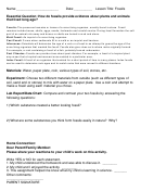 Fossils Science Lab Report Template