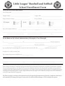 Incident/injury Tracking Report-little League Baseball Form ...