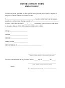 Minor Consent Form 4505.031 O.r.c.