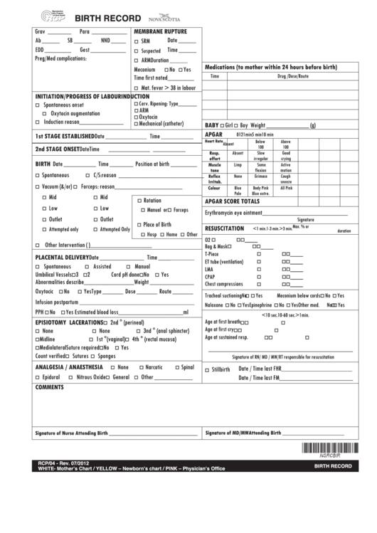 Birth Record Form Printable Pdf