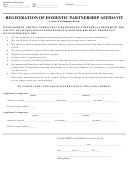 Registration Of Domestic Partnership Affidavit Form - County Of Champaign, Illinois