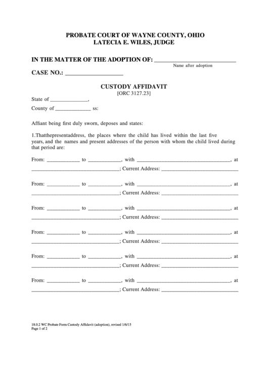 Fillable Custody Affidavit Form