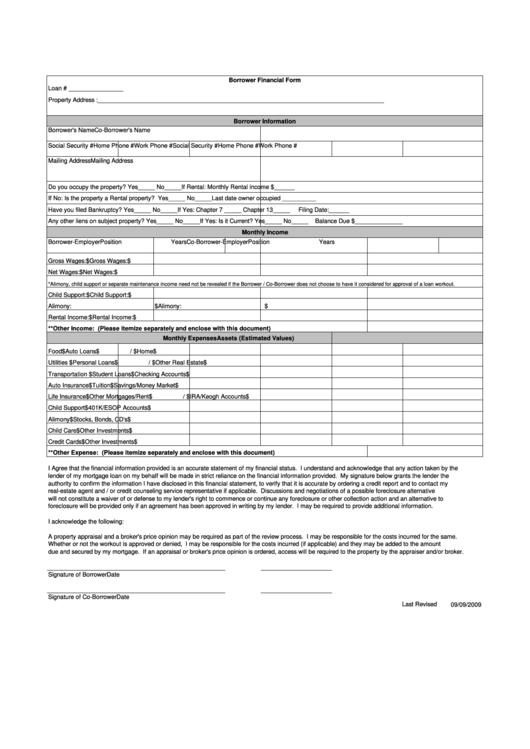 Borrower Financial Form