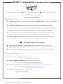 Profit Corporation Instructions