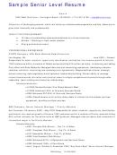 Sample Senior Level Resume
