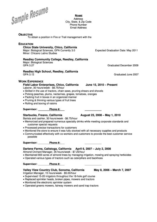 Sample Resume Printable pdf