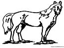 Horse Coloring Sheet