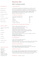 Student Sales Assistant Template Sample