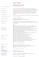 Marketing Assistant Cv Template Sample