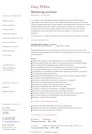 Marketing Assistant Cv Template Sample