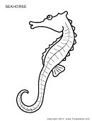 Seahorse Coloring Sheet