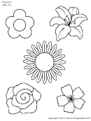 Flowers (set 6) Template